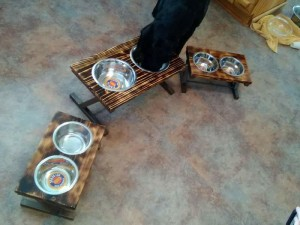 Eli and dog dish stand